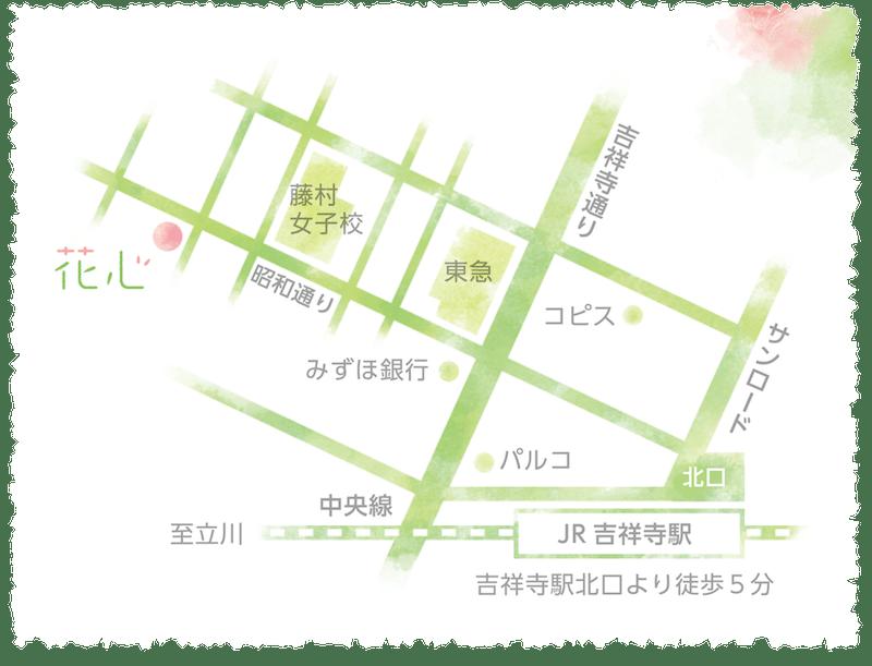 hanachizu