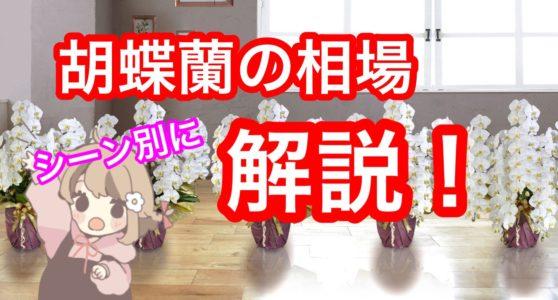 お祝いに贈る「胡蝶蘭の相場」をシーン別に解説していきます!