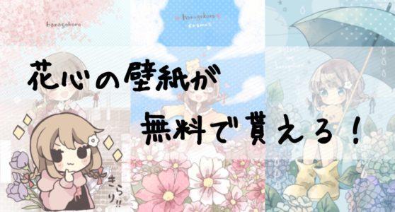 【花好き必見!】花屋が贈る無料の壁紙~花心ちゃん壁紙ギャラリー~